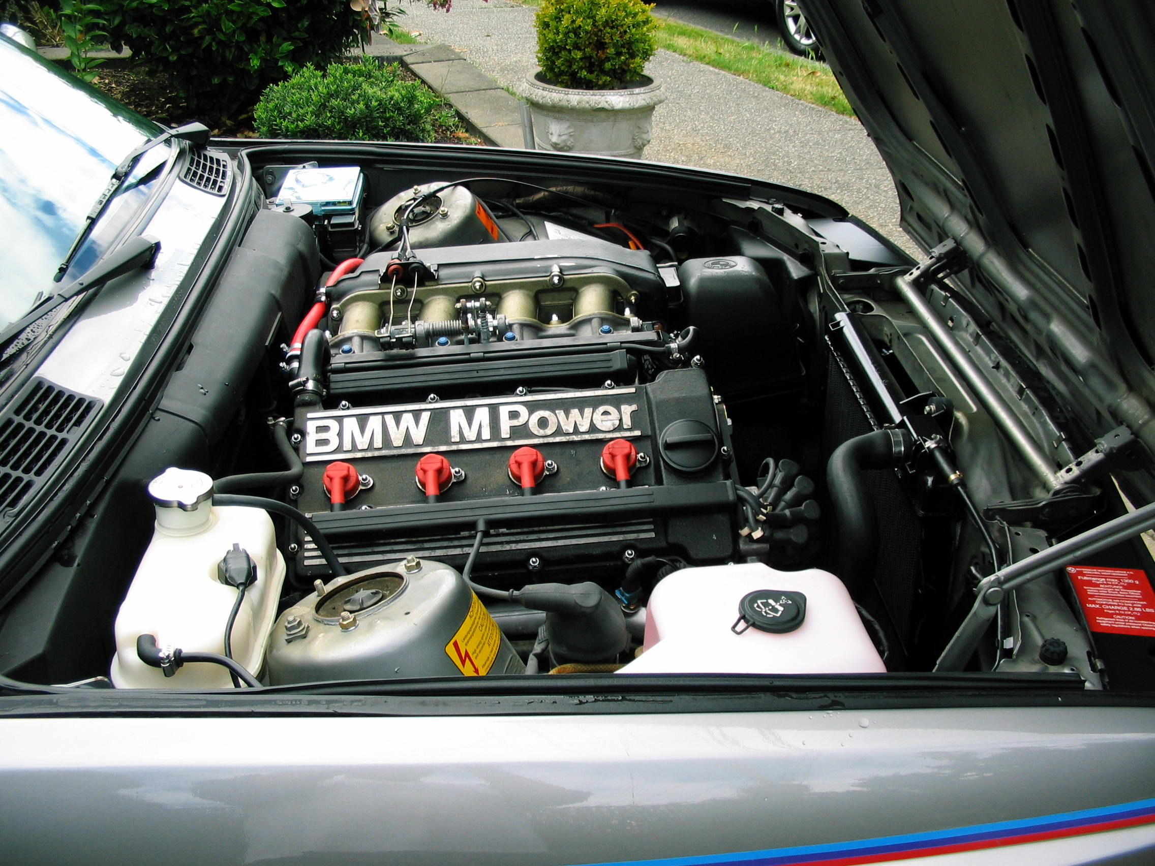 Silver with tricolor pin stripes 1988 BMW M3 | German Cars For Sale Blog